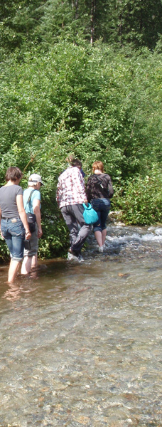 Walking in the stream with the spawning salmon
